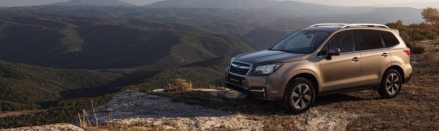 Explore the range of Forester cars